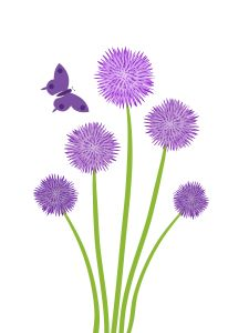 Testimonials, FAQ's & Links. purple posy